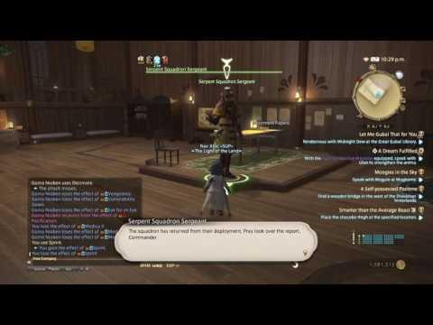 Final Fantasy XIV: Soul Surrender - Squadron Grand Company