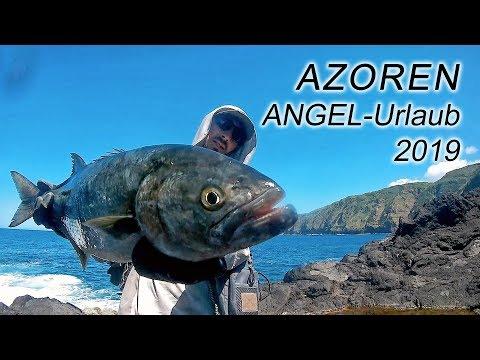 Spinnefiskeri efter blåbars på Azorerne