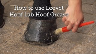 How to use Leovet Hoof Lab Hoof Grease