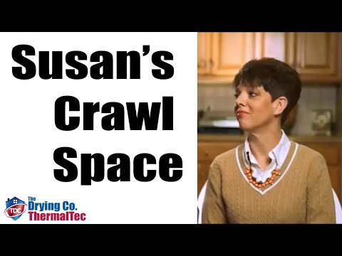 Susan talks about her experience with The Drying Co. and her crawl space results.