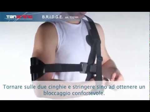Lussazione del menisco del ginocchio