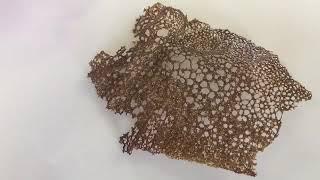 Coral Flour Tuile Garnish