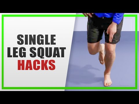 Single Leg Squat (with leg back)