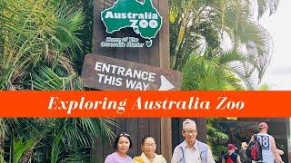 Australia Zoo Crocodile Show - Wildlife Vlog