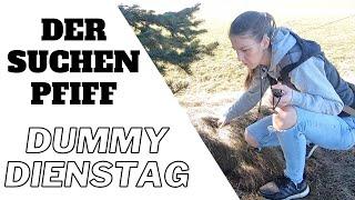 Dummytraining: Der Suchenpfiff Training + Aufbau
