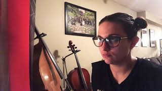 Ann Marie Castellano covers The Icicle Melts - The Cranberries