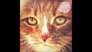 Ramon Tapia - Pili Pili (Original Mix) [Suara]