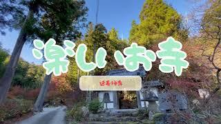 【楽しいお寺】彦根市 延寿禅寺