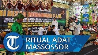 Ritual Adat Massossor Meriahkan Peringatan Maulid Nabi di Salabose Majene
