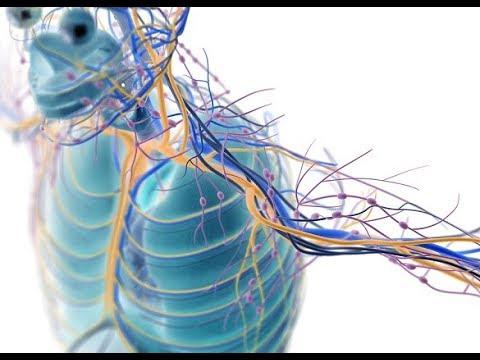 Frota ungüento para los músculos y las articulaciones
