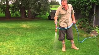 Watering your new lawn