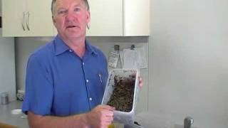 At Home with Mike Fidler DVD - Sprouting Seed Part 2 of 3