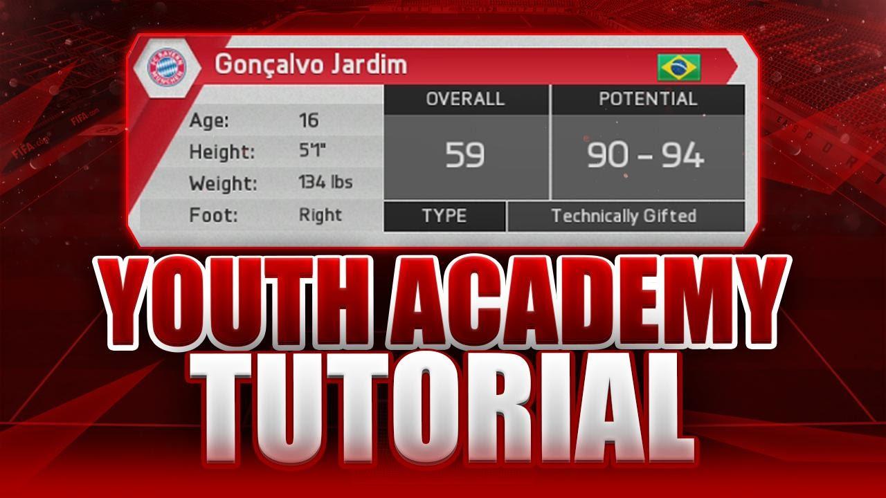 Fifa youth academy