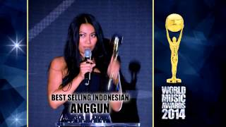 World Music Awards 2014 - The Anggun parts