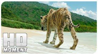 Пи и тигр спаслись, концовка - Жизнь Пи (2012) - Момент из фильма