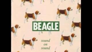 Beagle -  Love Grows Where My Rosemary Goes