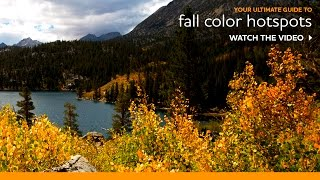 Where to Go for Fall Color Viewing in Eastern Sierra