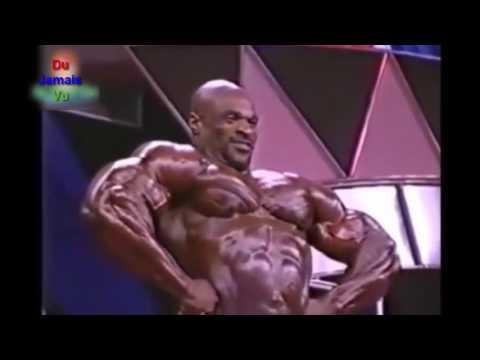 Prokatchat un grand muscle adducteur