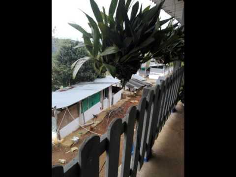 Fincas y Casas Campestres, Venta, Dagua - $280.000.000