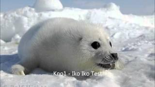 My Iko Iko