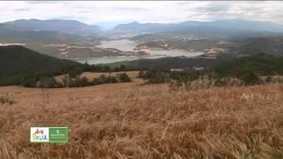 Video del alojamiento Cal Segon