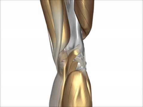 Was zu tun ist, wenn ein Rückenschmerzen durch die Schwerkraft
