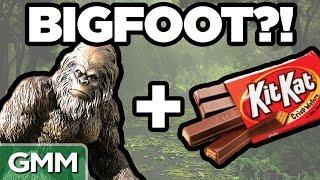 Real Bigfoot Facts (GAME)