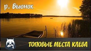РУССКАЯ РЫБАЛКА 4. ТОПОВЫЕ МЕСТА КЛЕВА  Р. ВЬЮНОК.