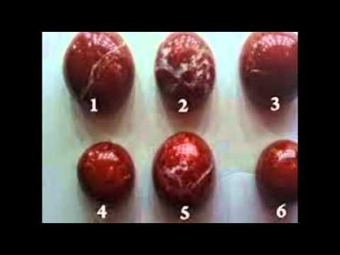 Galandféreg parazita az emberben