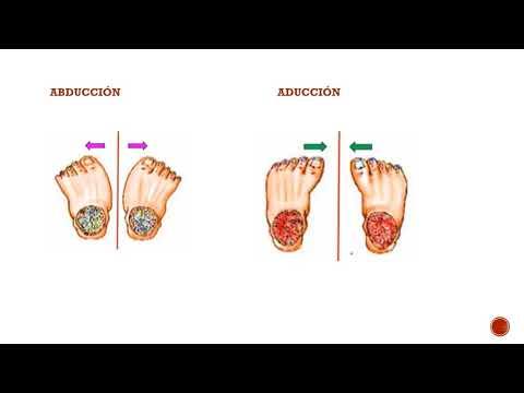Ce este artroza articulațiilor șoldului la 2 grade