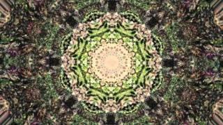 Celestial (Kaleidoscopic) (Steve Kilbey Painkiller)