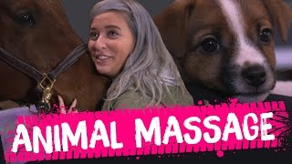 LEARNING TO MASSAGE ANIMALS?! (Beauty Trippin)