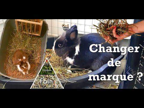 , title : '{info} Les 5 raisons pour lesquelles votre lapin n'aime pas le foin !
