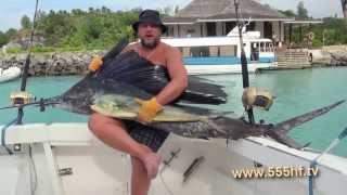 Рыбалка. Морская рыбалка. Рыбалка видео. Поймал. Голубой марлин. Катушка. Удилище. Леска.