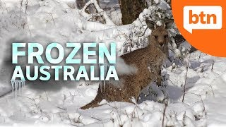 Australia's Extreme Weather: Winter Edition