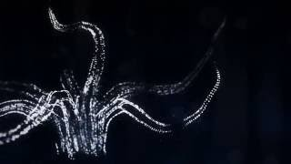 Alina Baraz & Galimatias - Drift (Animated Video)