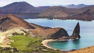 Galápagos Trip Summer 2018
