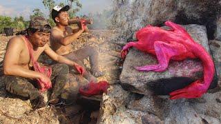 เป็ดยักษ์สีชมพู ย่างบนแผนหิน โคตรแซ่บจิ๊ด!! - dooclip.me