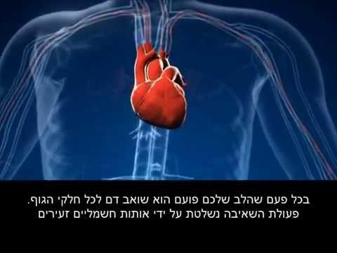 פעולת לב בריא