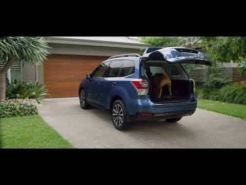 Subaru  Forester Паркетник класса J - рекламное видео 3