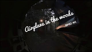 Plane in the Woods. Cinematic FPV