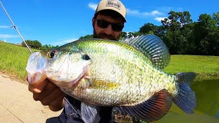 MONSTER SUMMER CRAPPIE FISHING!!