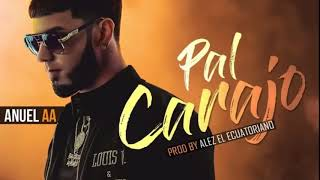 Pal' Carajo - Anuel AA (Video)