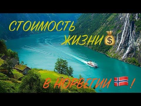 Жизнь в Норвегии - расходы в месяц: жилье, еда, машина, страховка… Сколько мы тратим в месяц?