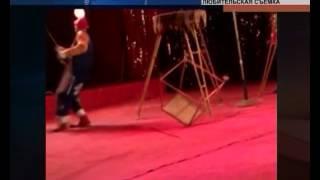 Леопард напал на девочек в цирке