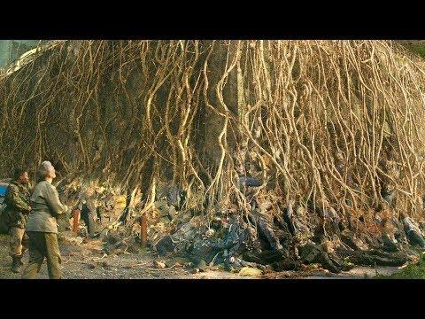 喪屍腦中長出真菌植物,聚成了參天大樹,成熟後人類便會滅絕!