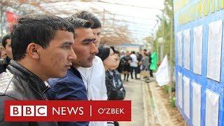 Ўзбекистон: Дунёдаги энг қиммат иш ўрни Ўзбекистонда- BBC Uzbek