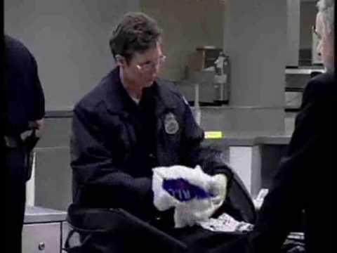 Customs Inspector