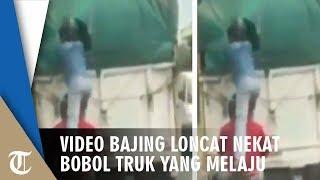 Viral Video Aksi Bajing Loncat Nekat Bobol Truk yang Melaju