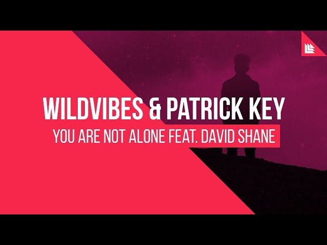 Wildvibes & Patrick Key Feat. David Shane - You Are Not Alone